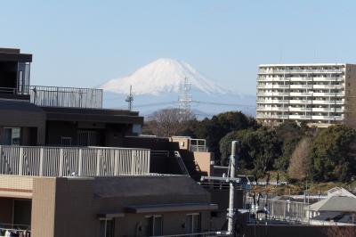 コスモ東戸塚グランパルクから見る富士山
