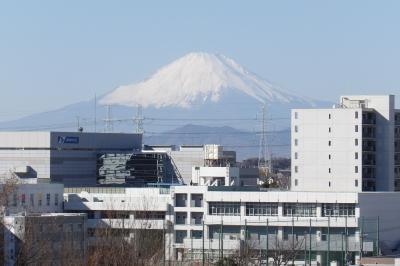 JR東戸塚駅東側の尾根道から見える富士山