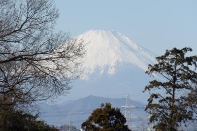平戸みはらし公園から見える富士山
