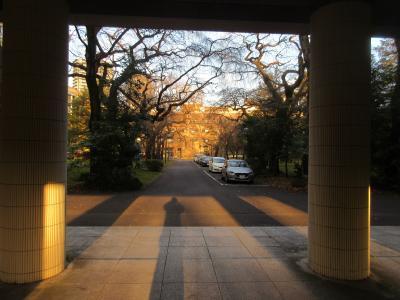 仙台まち巡り、東北大学へ