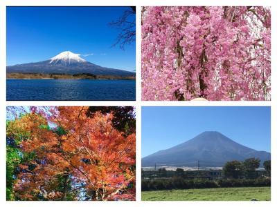 富士山裾野ウォーク2016
