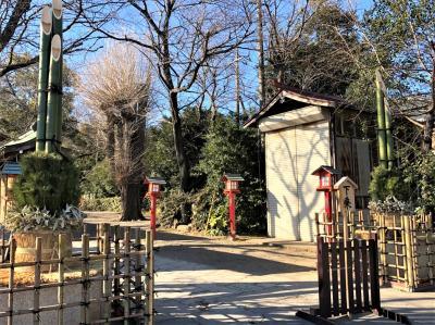 元祖アニメの聖地☆彡 = 鷲宮神社 鏡開き祭り =