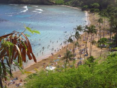 ハワイのクリスマス(第3部)