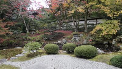 紅葉巡り(京都) 1日目前半