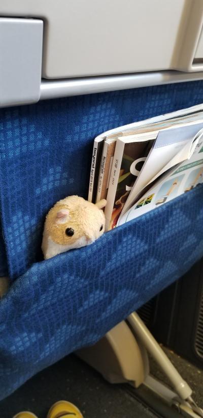 【グアム】2019☆GW 8歳3歳子連れ 飛行機・空港編