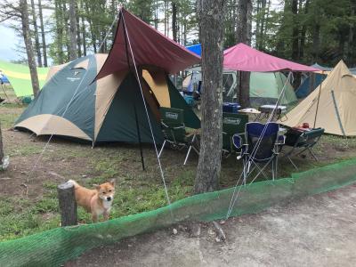 従兄弟と白馬でキャンプ①(到着、諏訪湖花火大会へも行く)