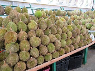 2018年12月 マレーシア (7) : バトゥ・ケーブとドリアン挑戦