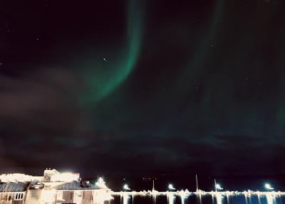 オーロラ直行便で北欧へ4 ノルウェー編
