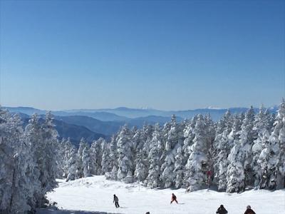 今年初めのスキーは、毎年恒例の志賀高原と岩菅ホテル