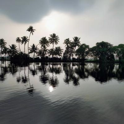 南インド・ケララの風3(アラップーザ&バックウォーター)