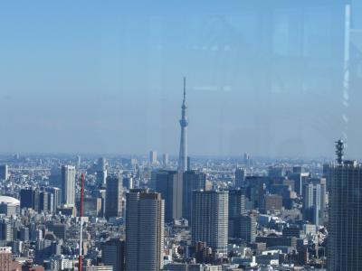 久しぶりの東京!お上りさんには、不便すぎる、これが都会だったっけ?(1)