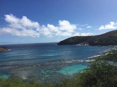 12月のハワイ旅行!