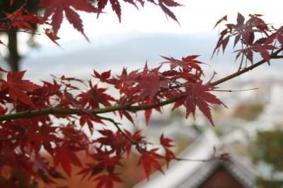 秋の京都 叡山電車で紅葉をたずねて