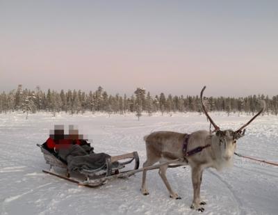 北欧のクリスマス8日間-5-サーリセルカ滞在編3