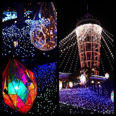 夜の森の散歩☆江ノ島の宝石☆イルミネーション