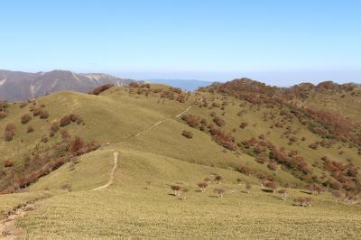 竜ヶ岳(三重)となばなの里へ行ってみました、赤い羊ではなかったけれど、よい山でした。