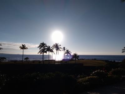 2019年1月 ハワイ島初上陸【前編:1日目・2日目】