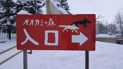 そうだ!旭山動物園に行こう!