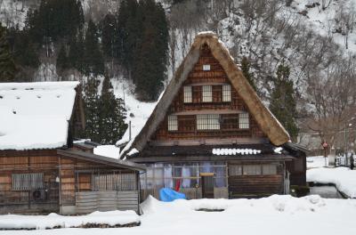 冬の時期は雪を見ようと、北陸に行きました。(五箇山・瑞龍寺編)