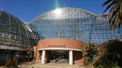 夢の島公園熱帯植物館へ行ってきました。