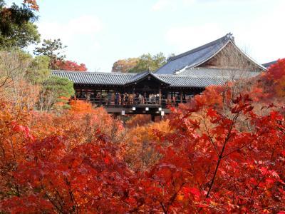 紅葉を求めて京都へ 2018
