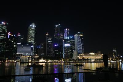 シンガポールでホテルステイ 2019<5>夜の散策!編