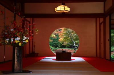 鎌倉紅葉巡り2018 ~円覚寺・明月院・長寿寺~
