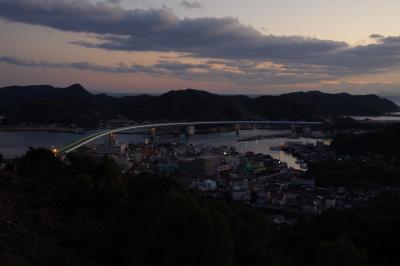 遠見山公園の水仙はこれからでした@平成最後の年末年始も天草で過ごす【4】
