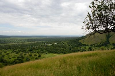 ウガンダ・マウンテンゴリラに会いに行く旅2(カンパラ~ムブロ湖国立公園)