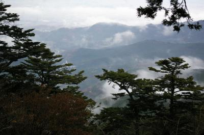 低登山ー大山参拝