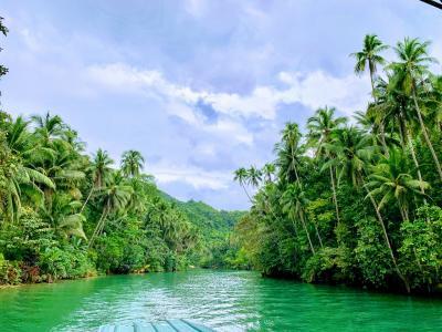 フィリピン-セブ島、ボホール島、パングラオ島 特典旅行そして訳あって一人旅