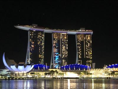 お仕事シンガポール、合間に食べたり買ったり日記