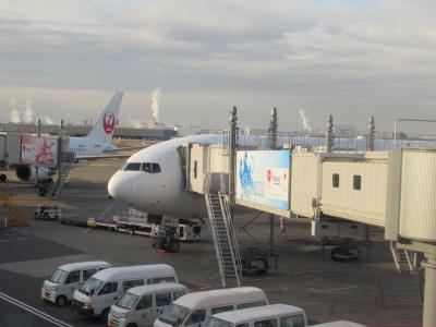 沖縄・久米島2019冬(2)羽田から那覇へのフライト