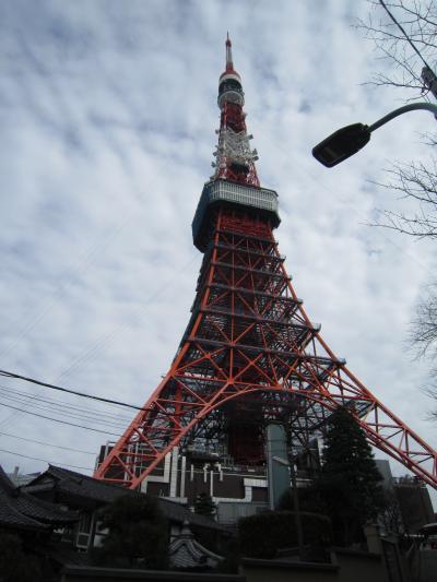 おのぼりさんが行く♪久しぶりの東京タワー♪