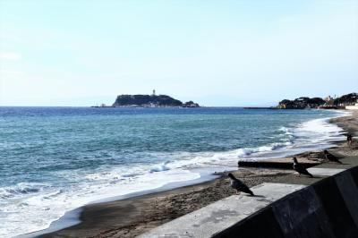 江ノ電に乗って初冬の鎌倉散歩