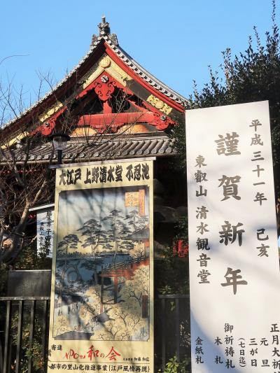 上野-2 上野恩賜公園  寛永寺清水観音堂-初詣- ☆2019年新春・有名でない名所を訪ねて