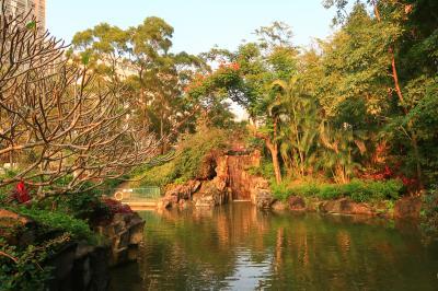 香港★荃灣日記 様々な植物が見られる自然いっぱいの公園 ~城門谷公園~