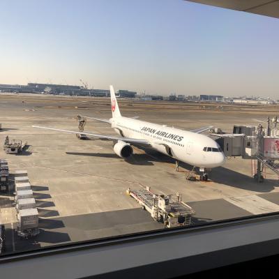JALで羽田から関空へ