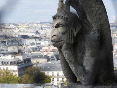 中世に出会う旅, 番外編.ノートルダム・ド・パリの塔に上った。