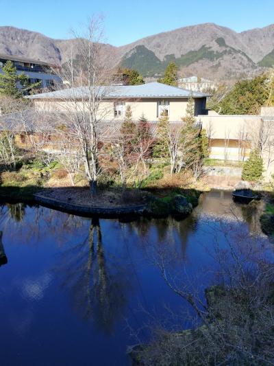 2019 初旅行は箱根へ。ただただ温泉を楽しむ旅