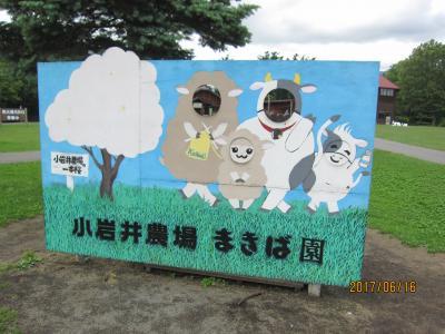 2017年6月/新幹線で行くつなぎ温泉(湯守ホテル大観うらら)と小岩井農場