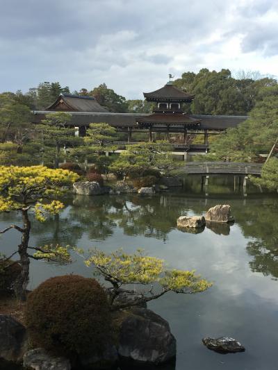 冬の京都散策(^_^)  もちろんちゃんとしたお仕事です!