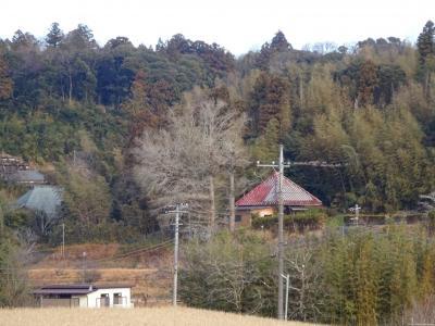七十路夫婦 ヤマトタケルを旅する 日本書紀編その九、房総横断、木更津から茂原まで