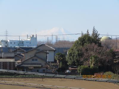 1月24日ふじみ野市より見られた富士山