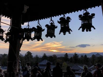 奈良マラソン2018参加(10km+3km)と東大寺散策
