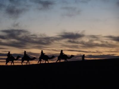 2018年末 モロッコ周遊旅 + ちょこっとパリ (6) メルズーカ~ワルザザード