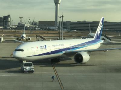 2019年1月10日、NH110(HND→JFK)搭乗記 ~久しぶりの長距離ビジネス、行きはワクワク♪~