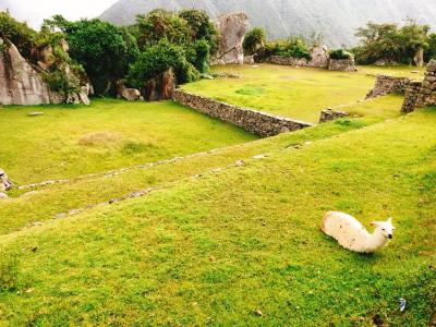 年越しペルー旅 6.マチュピチュを後にオリャンタイタンボへ