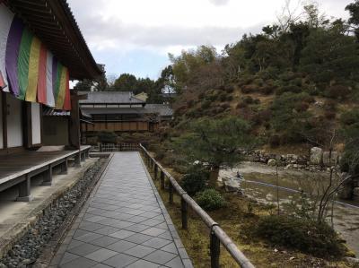 2019冬の特別拝観 日帰り京都4時間観光