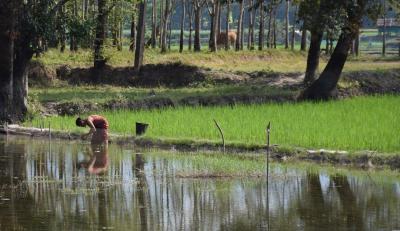 ミャンマー 一人旅(パアンのお寺巡り)